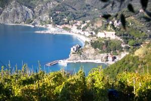 arrivée sentier sur Monterosso 5 terres