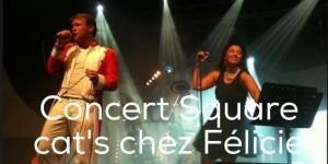concert square cat's chez felicie