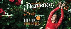 extramural flamenco spectacle danse soirée marseille bal