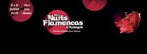 les nuits flamencas aubagne