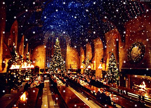 soiree-noel-harry-potter-marseille