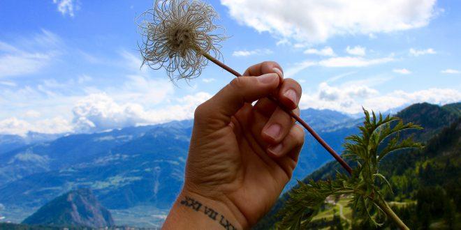 Randonnée dans le Valais… Ovronnaz et ses sommets suisses