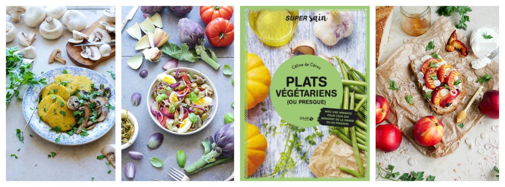 livre plats vegetarien ou presque