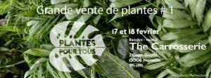 Grande vente de plantes Marseille
