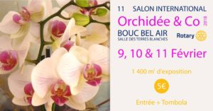 Salon Orchidée &co 2018 - 11ème édition du salon Orchidays