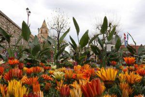 21ème Fête des Plantes et des Fleurs