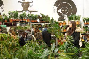 Grande Vente de Plantes #3