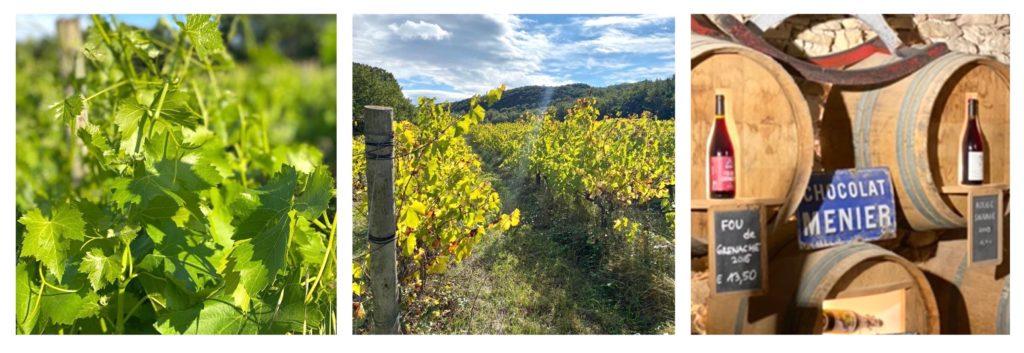 domaine de gressac vin