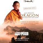 spectacle Le petit Dragon sudconcert dome de marseille cirque de pekin moines shaolin