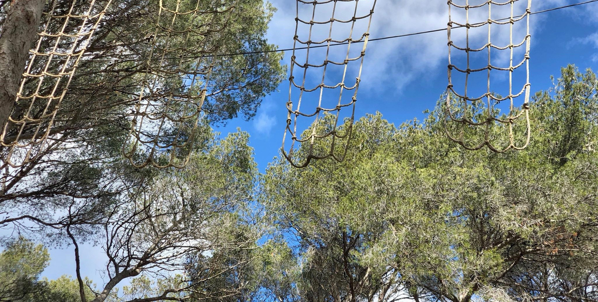 cassis forest accrobranche